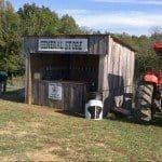 Nashville-Fun-For-Families-Honeysuckle-Hill-Farm-16-2